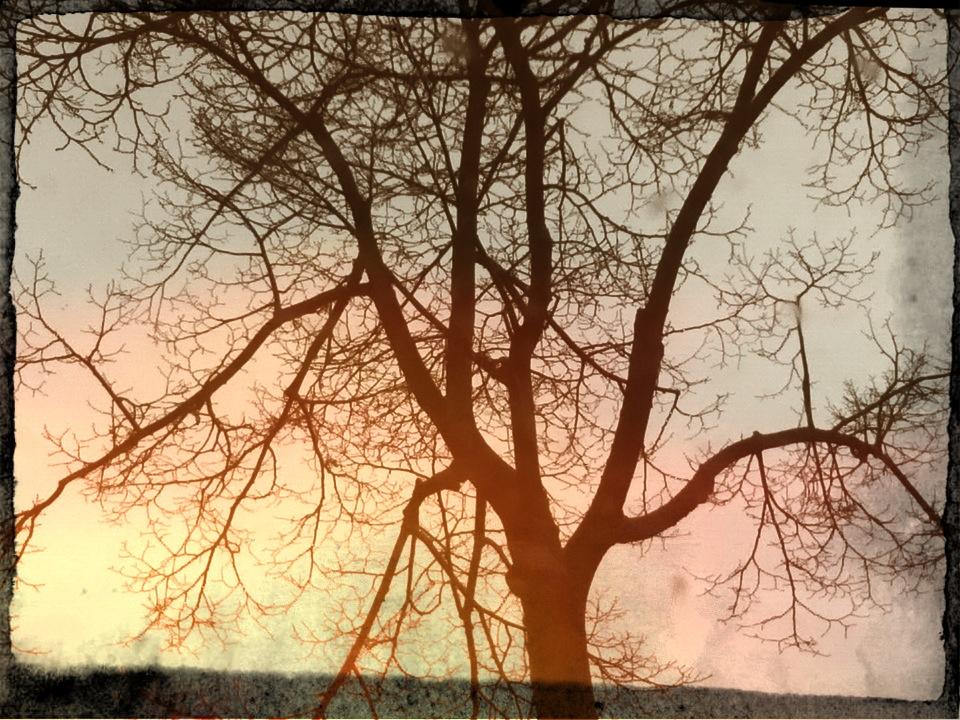 berlin_foto-181212-20-47-01.jpg