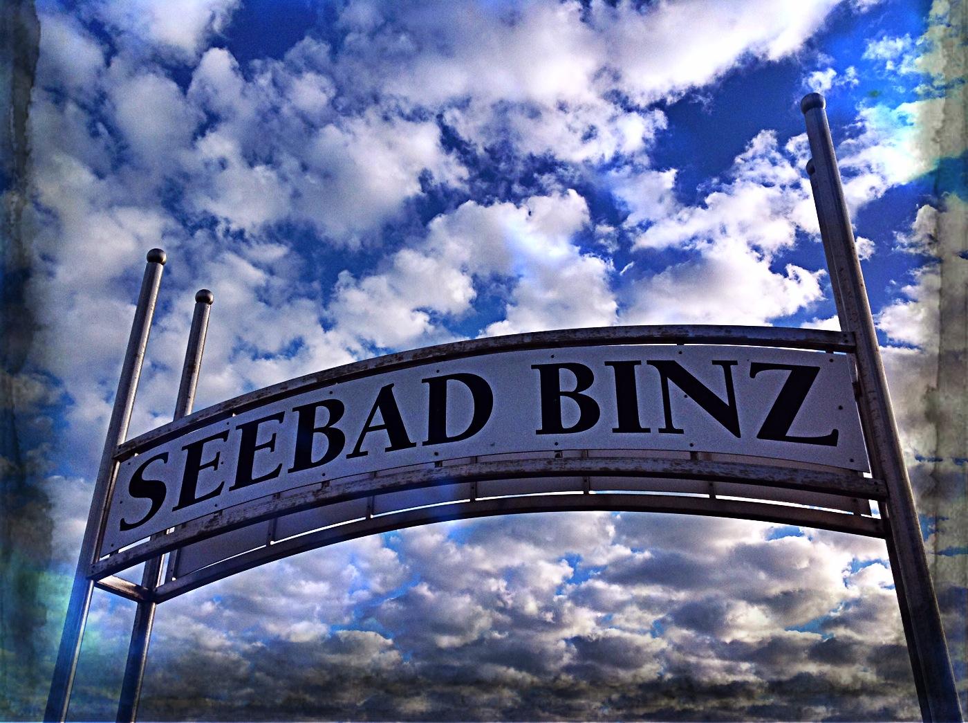 binz2014 (7)